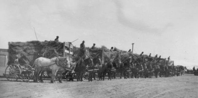 Dangberg-Feed-Wagons-1920