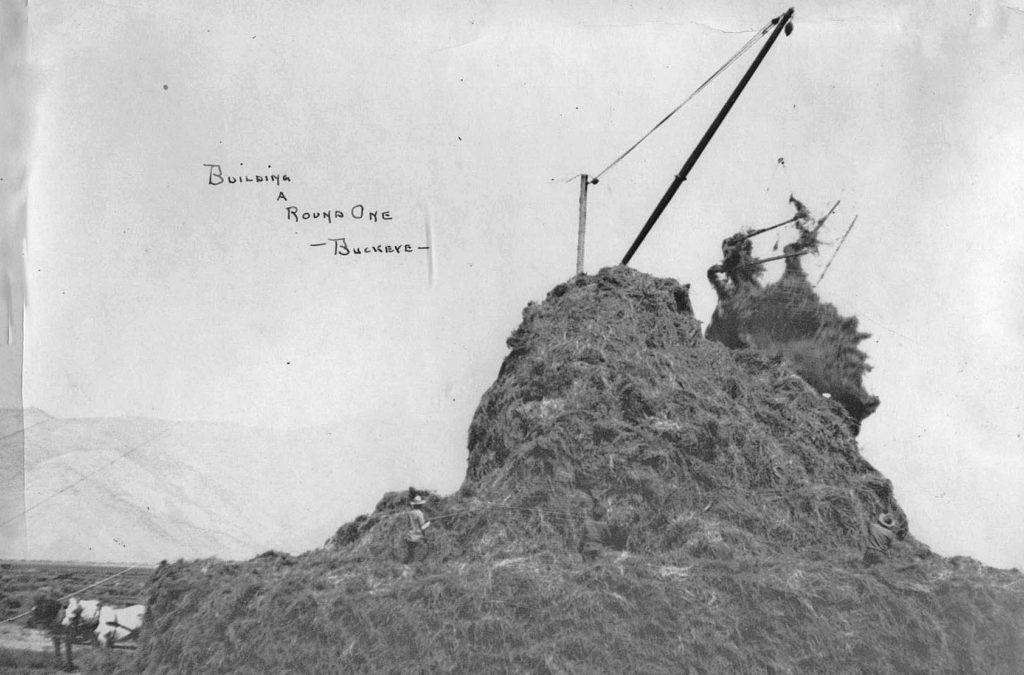 Haystack-Building