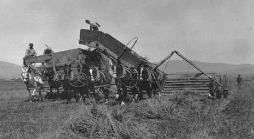 Dangberg Ranch