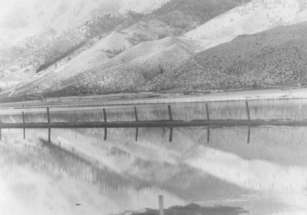 1986-Flood-Muller-Lane