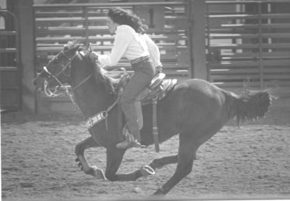 1983-DHS-Rodeo