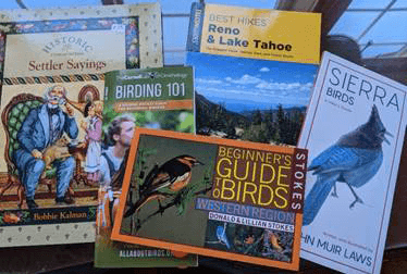 beginners-guide-to-birds